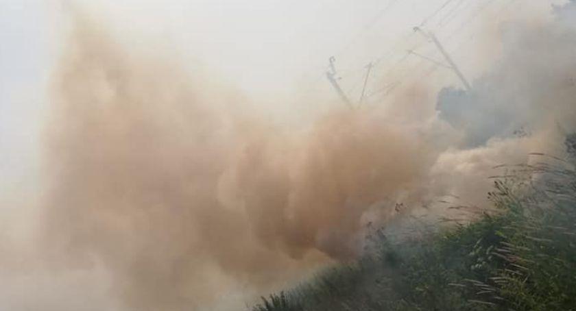 Pożary, Osiem zastępów gasiło pożar gminie Sońsk [zdjęcia] - zdjęcie, fotografia