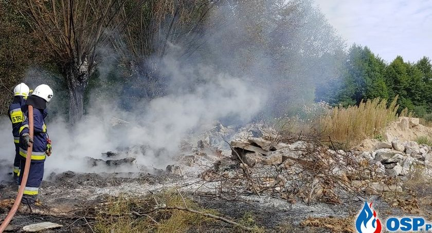 Pożary, Glinojeckiem płonęły drzewa nieużytki [zdjęcia] - zdjęcie, fotografia