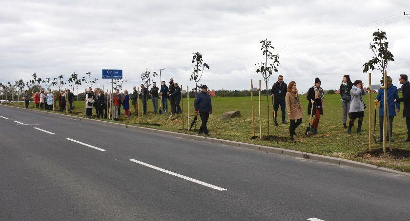 Społeczeństwo, Zasadzili ponad drzew wzdłuż pętli miejskiej - zdjęcie, fotografia