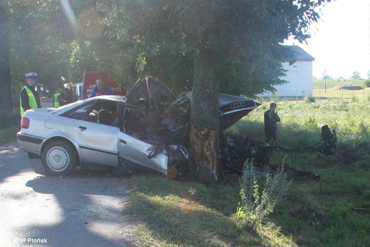 Wypadki drogowe, uderzyło drzewo Jedna osoba zginęła - zdjęcie, fotografia