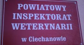 Znamy już nazwisko nowego Powiatowego Lekarza Weterynarii w Ciechanowie