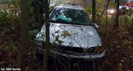 BMW przejechało przez skrzyżowanie i zatrzymało się w lesie. Dwie osoby w szpitalu (zdjęcia)
