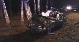 Audi uderzyło w łosia. Dwóch braci rannych