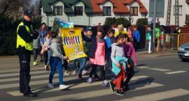 Uczniowie z Ciechanowa i okolic apelowali do kierowców: Nie polujemy na zebrach! [zdjęcia]