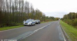 Sarna wbiegła na drogę. Kierowca z urazem kręgosłupa trafił do szpitala