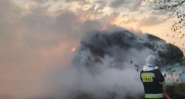 Duży pożar pod Ciechanowem. Z ogniem walczyło 8 zastępów straży pożarnej [zdjęcia]