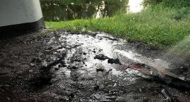 Pożar pod mostem i duże zadymienie na drodze w Glinojecku [zdjęcia]