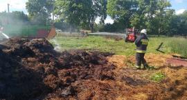 Cztery zastępy strażaków walczyły z pożarem pod Ciechanowem [zdjęcia]