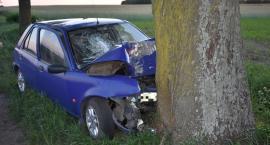 Ford uderzył w drzewo. Kierowca zginął na miejscu