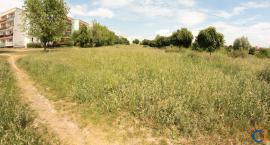 Na Jeziorku i Krubinie powstaną parki? Miasto powalczy o dofinansowanie inwestycji