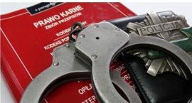 [AKTUALIZACJA] Podejrzany o przestępstwo na tle seksualnym w rękach ciechanowskiej policji