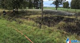 Paliło się w Glinojecku. Dwa zastępy straży pożarnej w akcji [zdjęcia]
