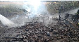 Pożar na terenie gminy Regimin [zdjęcia]