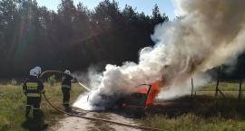 BMW doszczętnie spłonęło na drodze [zdjęcia]