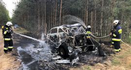 Pożar samochodu i poszycia lasu [zdjęcia]