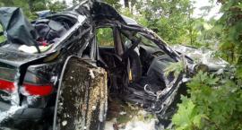 Renault uderzyło w drzewo. Ranna 27-latka [zdjęcia]