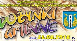 Czas na dożynki w gminie Opinogóra Górna