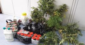 25-latek z narkotykowymi zarzutami