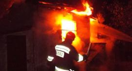 Pożar domku na terenie ogrodów działkowych. Mieszkaniec Ciechanowa poparzony [zdjęcia]