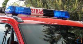 Strażacy z Ciechanowa uratowali psa, który zakleszczył się w furtce