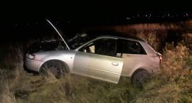 Audi wpadło do rowu. Za kierownicą pijany 22-latek [zdjęcia]