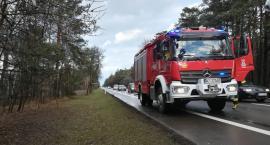Połamane drzewa utrudniały ruch na drogach pow. ciechanowskiego