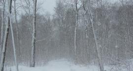 Wydano alert pogodowy dla powiatu ciechanowskiego