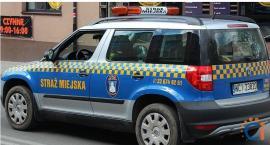 Kolejny nabór na wolne stanowisko w Straży Miejskiej