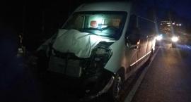 Renault uderzyło w łosia pod Glinojeckiem [zdjęcia]