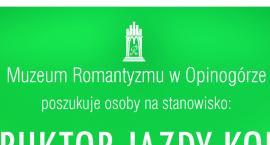 Praca w Muzeum Romantyzmu w Opinogórze
