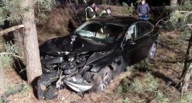 Wjechał BMW do lasu i uderzył w drzewo. Nie miał prawa jazdy [zdjęcia]
