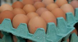 Salmonella w kolejnej partii jaj. GIS ostrzega