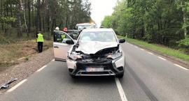 Mitsubishi uderzyło w łosia [zdjęcia]