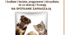 Zwierzęta i ich prawa - spotkanie w ciechanowskiej PBP