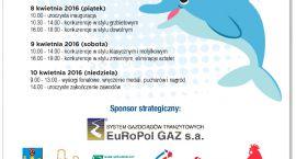 Żabką i delfinem z Ciechanowa do Warszawy