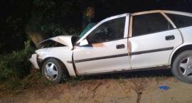 Opel uderzył w drzewo. Cztery młode osoby ranne [zdjęcia]