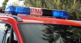 Strażacy z Ciechanowa ruszyli na pomoc kaczce
