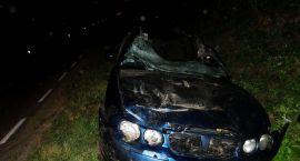 Tragedia pod Ciechanowem: 23-latek uderzył autem w łosia, zmarł w szpitalu (akt.)