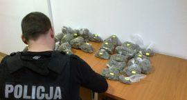 Narkotyki w rękach ciechanowskich policjantów