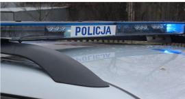 Policja przejęła marihuanę wartą kilkanaście tysięcy złotych