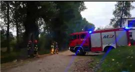 Pożar w ciechanowskim parku [wideo]