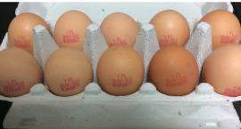 Uwaga! Partie jaj wycofywane ze sprzedaży. Powodem salmonella