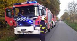 Pożar w lesie w gminie Sońsk [zdjęcia]