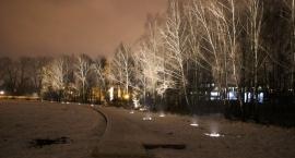 Dolina Rzeki Łydyni już z kładką dla pieszych i iluminacją drzew (zdjęcia)