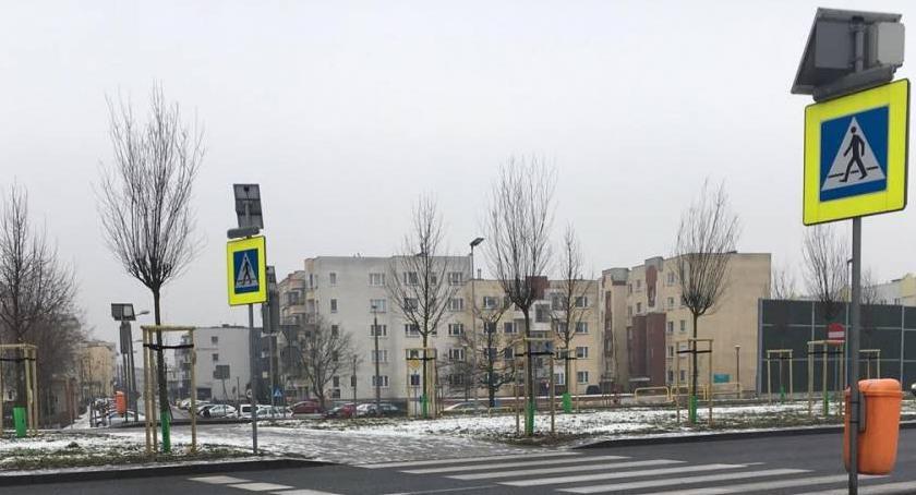 Wypadki, Miasto reaguje śmiertelny wypadek Trasie Średnicowej - zdjęcie, fotografia