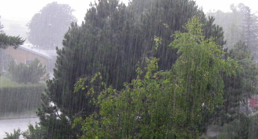 Pogoda, Pogoda znaki ostrzeżenie Toruńskiego Centrum Zarządzania Kryzysowego - zdjęcie, fotografia