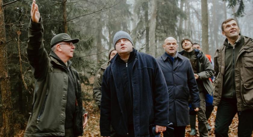 Ciekawostki, choinka która stanie przed Urzędem Marszałkowskim [FOTO] - zdjęcie, fotografia