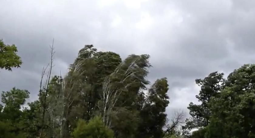 Pogoda, Niespokojny początek ostrzeżenie Torunia! - zdjęcie, fotografia