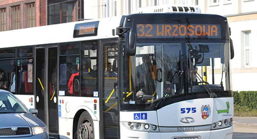 Komunikacja miejska, Kolejne bezpłatną komunikacją miejską Toruniu wszystkich - zdjęcie, fotografia
