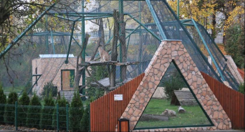 Komunikaty, Wyjątkowe ferie Ogrodzie Zoobotanicznym Toruniu - zdjęcie, fotografia